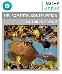 Conservacion ambiental y Biodiversidad
